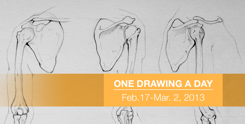Sketchbook: One Drawing a Day: Skeleton